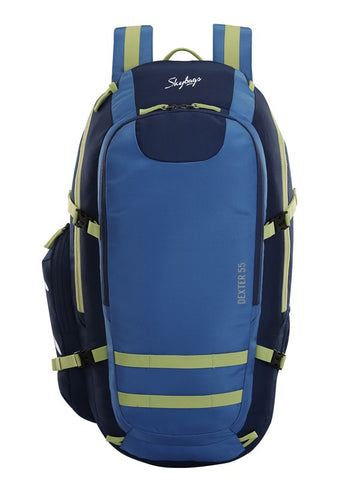 Skybags Dexter Plus 01 Grey School backpack
