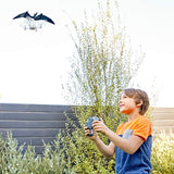 Jurassic World Pterano-Drone, Easy Flying RC Drone for Kids
