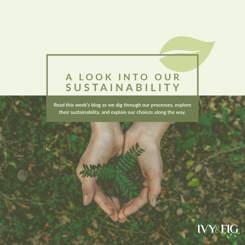 Examining our Current Sustainability