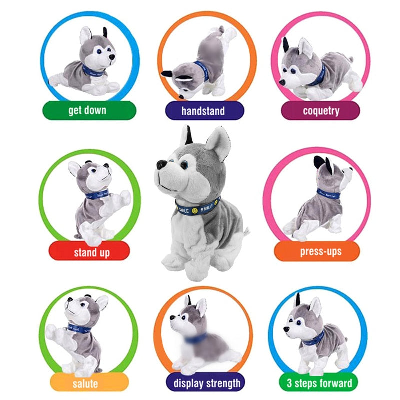 Cute Interactive Dog Toys