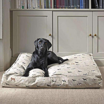 Pet Beds & Accessories by Sophie Allport & More