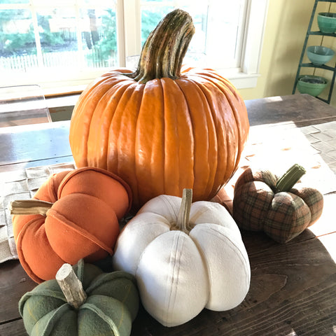 pumpkins on kitchen table