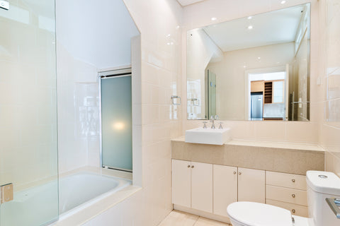 Shower Doors for Bathtubs