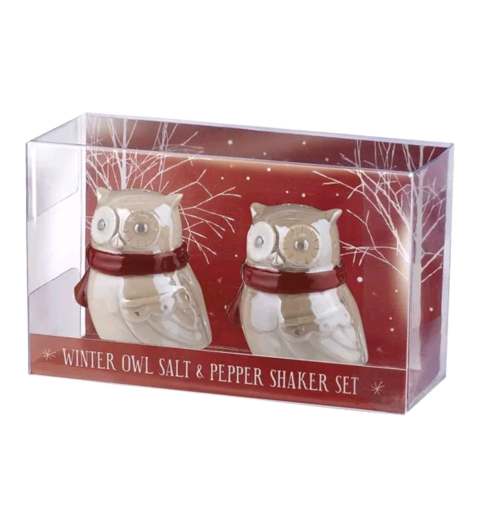 Northern lights owl salt & pepper set
