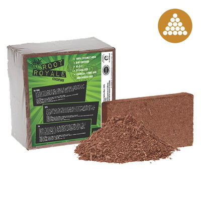 Root Royale Coco Brick