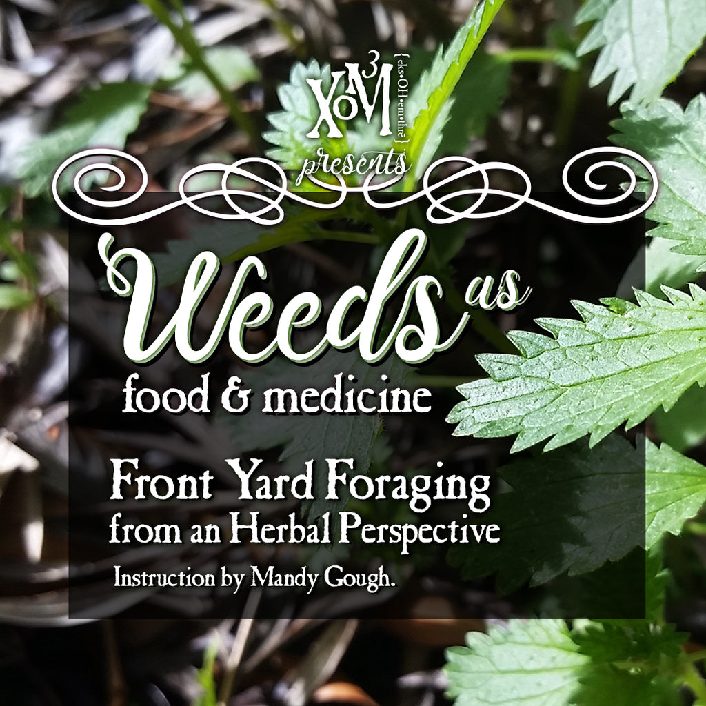 Weeds: Front Yard Foraging for Food & Medicine - XoM3 Botanical Solutions