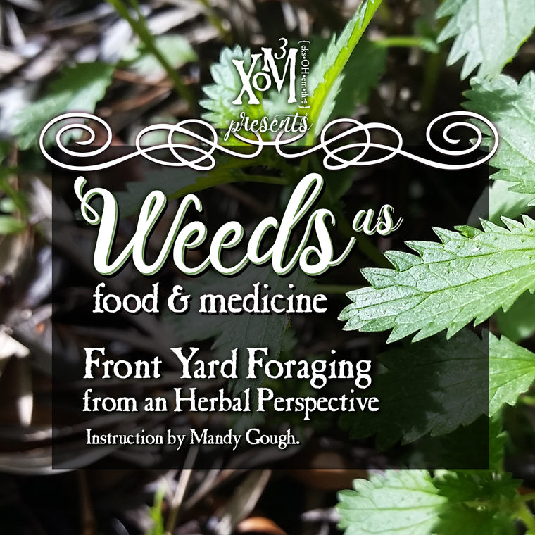 Weeds as Food & Medicine | Light in the Darkness 04/07/2018 - XoM3 Botanical Solutions