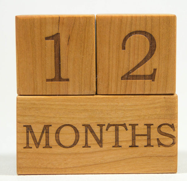 Milestone Blocks - Week, Month, Year,  & Grade - Handmade - Personalized
