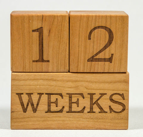 Baby Age Blocks Week Month Year Grade Milestone Blocks