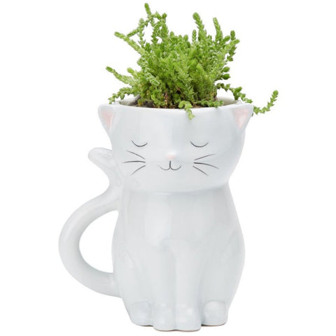 Sweetie Cat Planter Pot