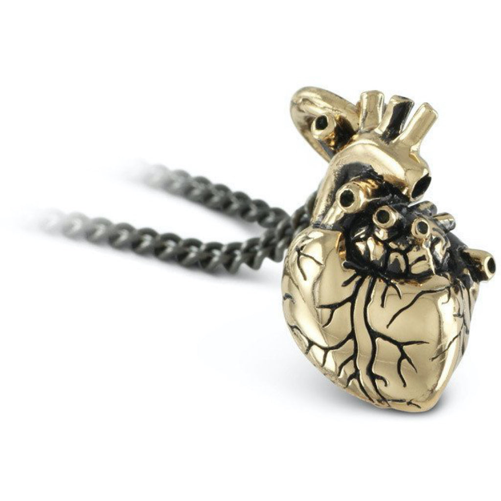 Anatomical Heart Small Bronze Necklace Closeup