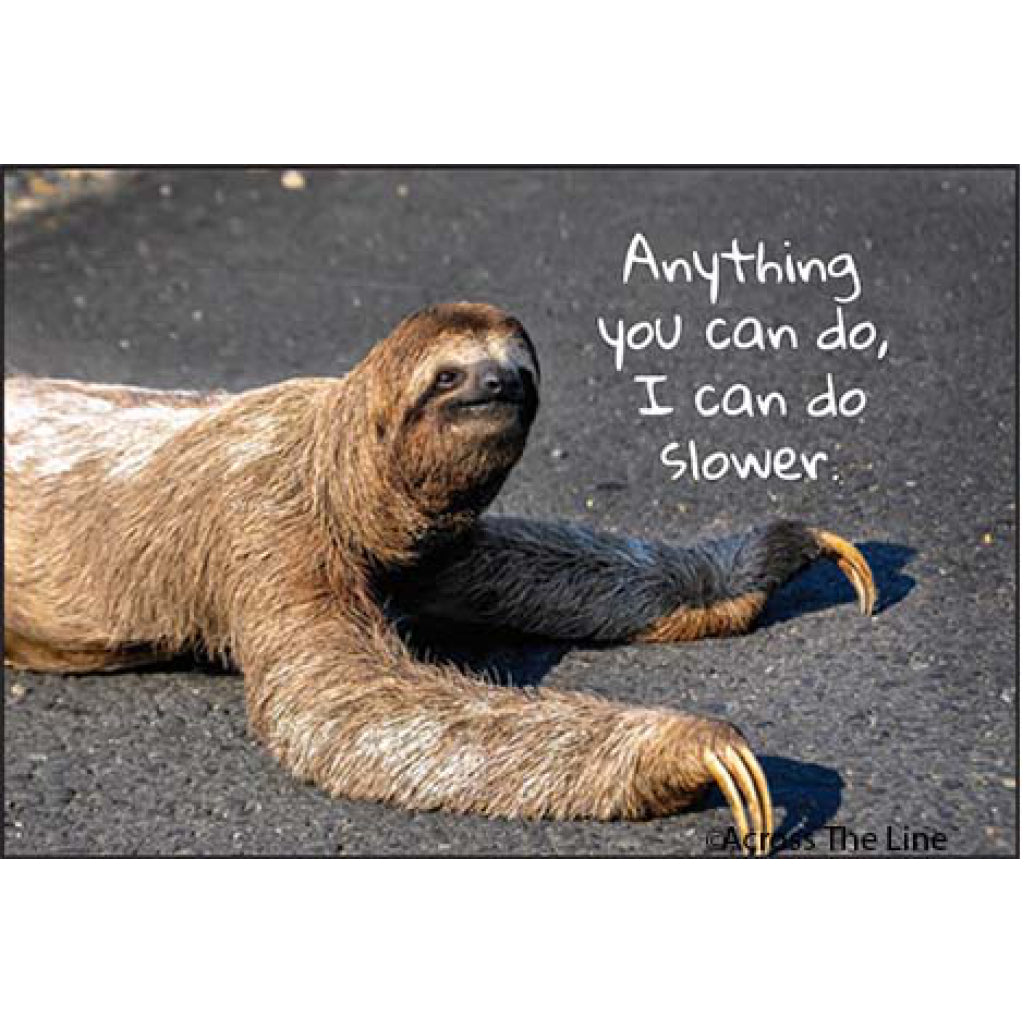 Anything You Can Do Sloth Magnet