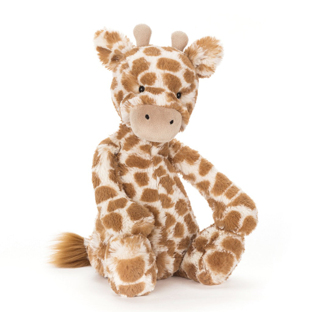 Bashful Small Giraffe