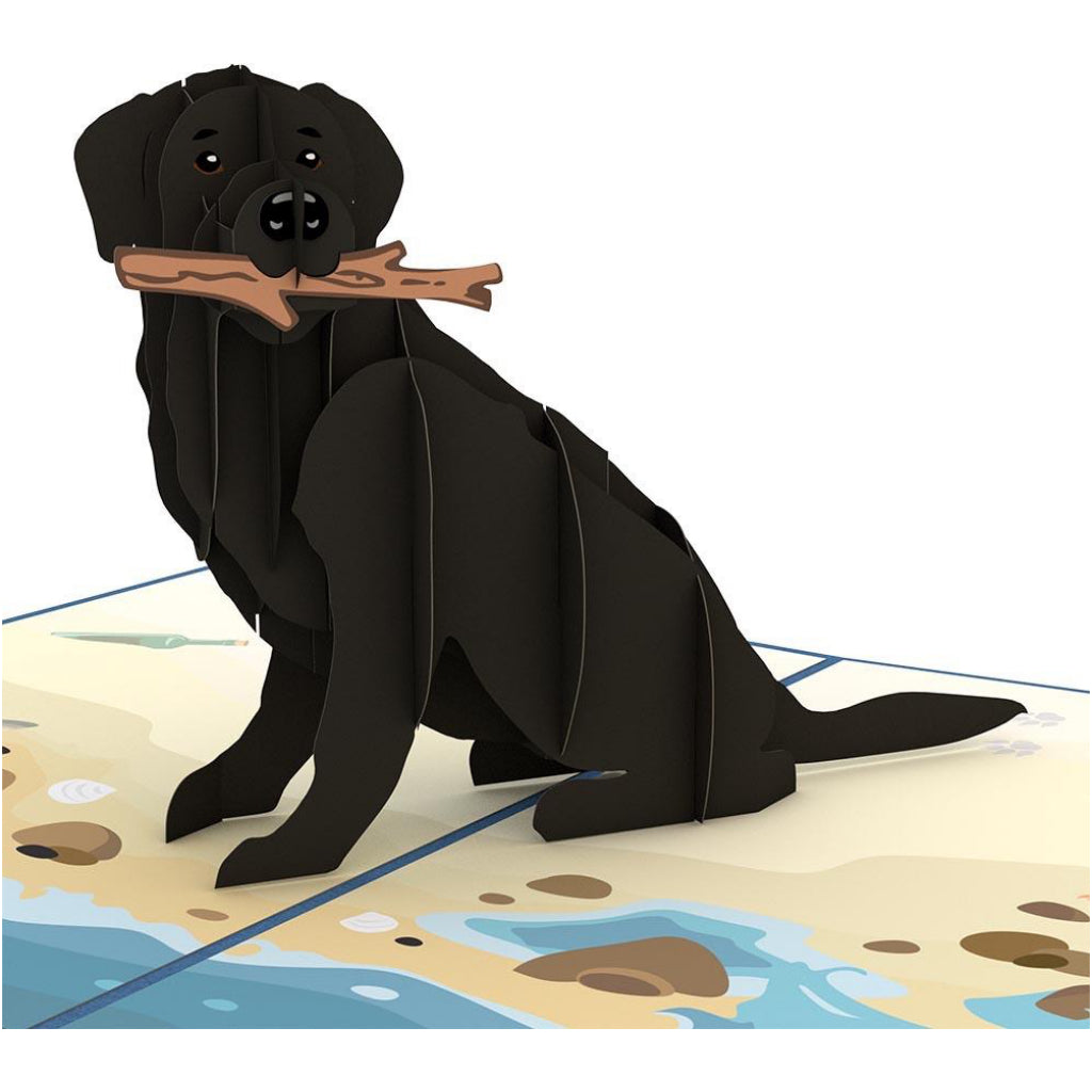 Black Labrador Dog 3D Pop Up Card