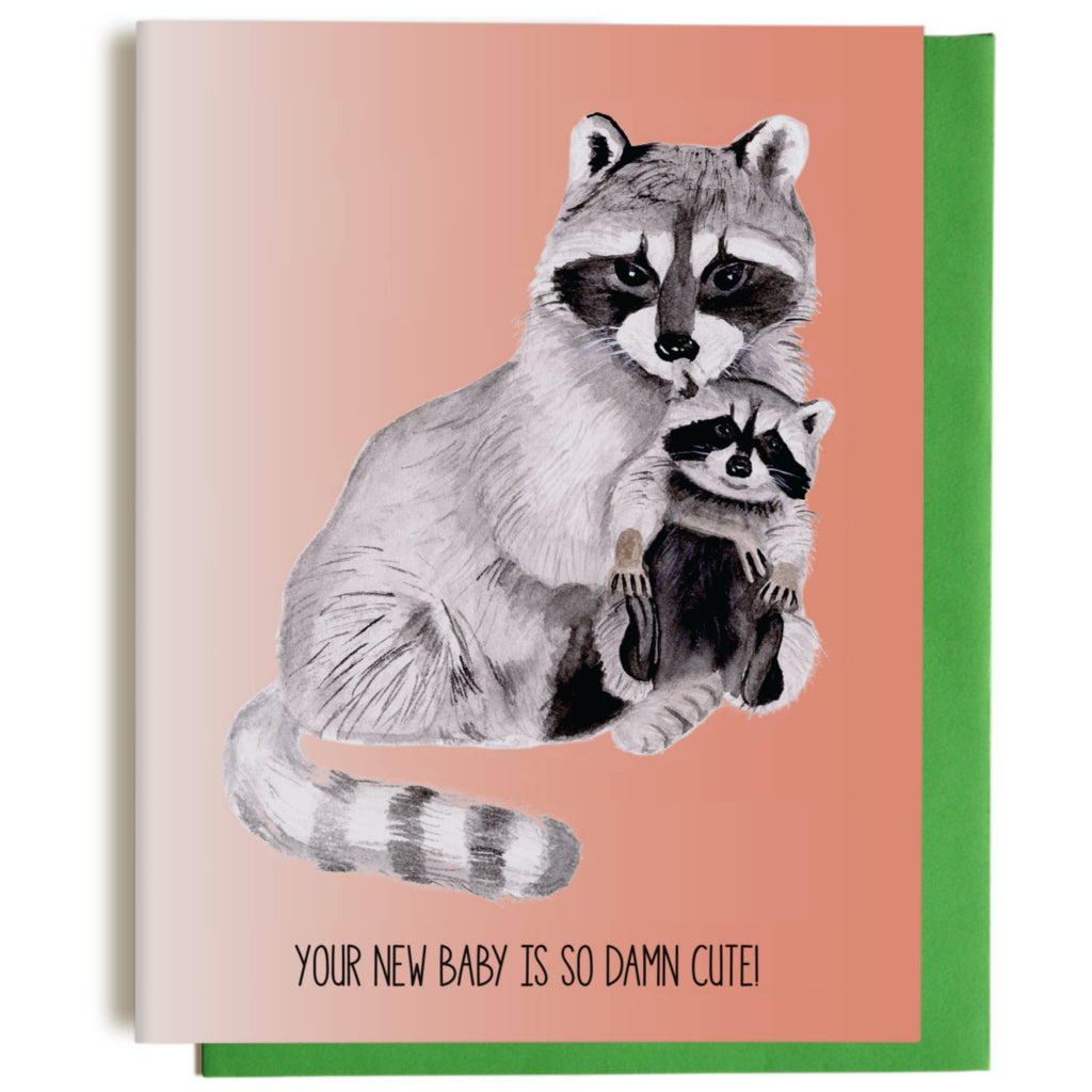 Cute Raccoon New Baby Card
