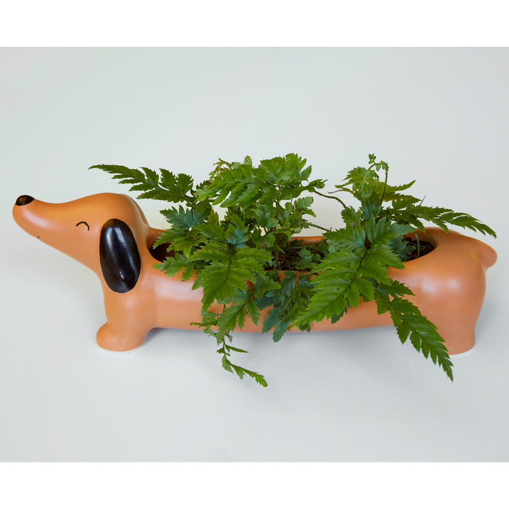 Daisy The Dachshund Planter Lifestyle