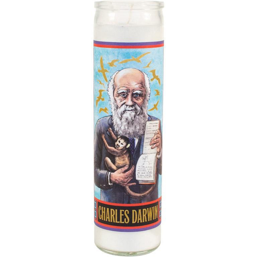 Darwin Secular Saint Candle
