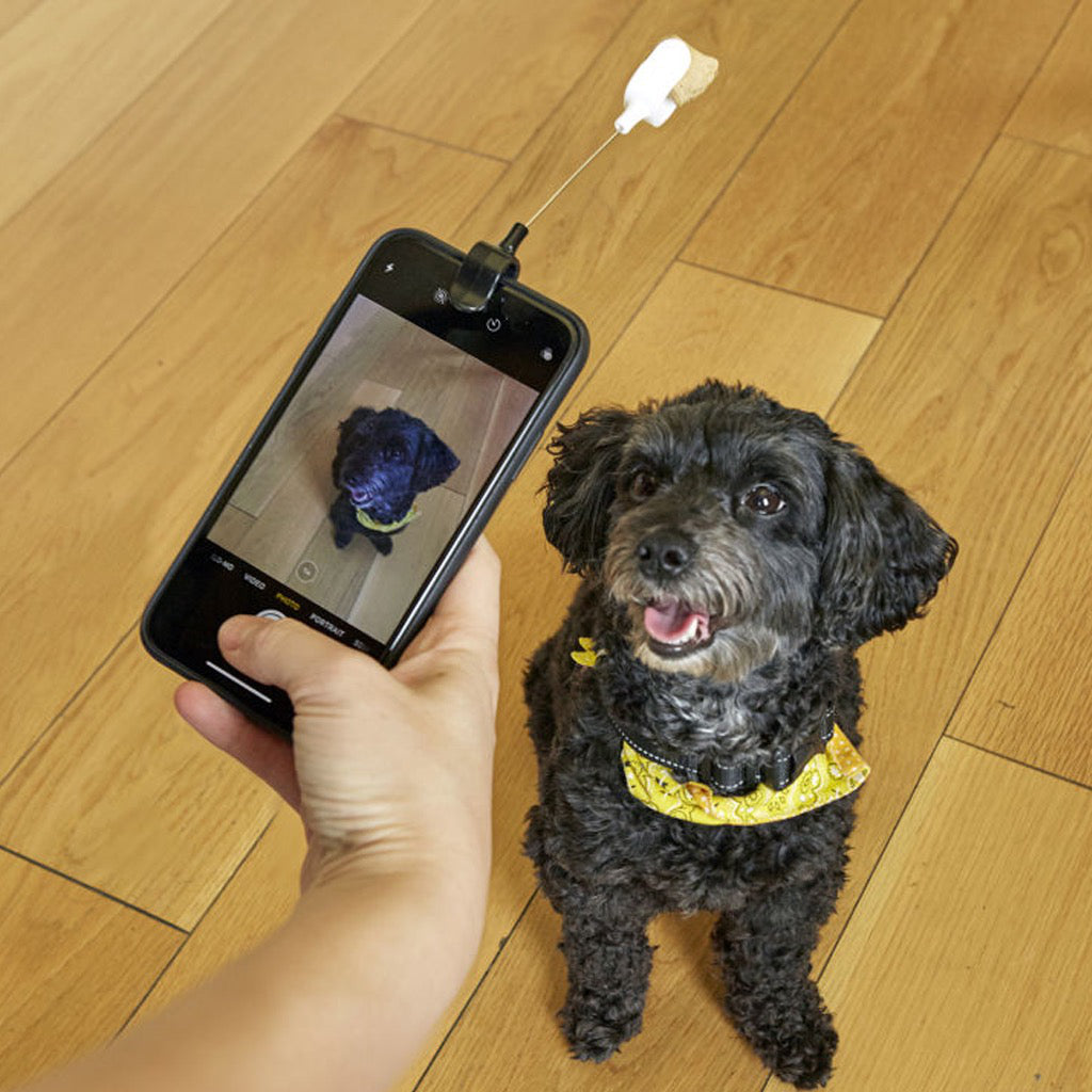 Dog Treat Selfie Clip In Use