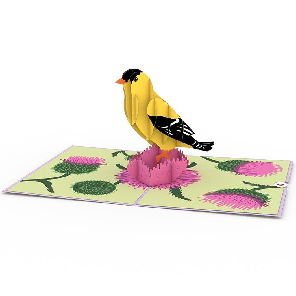 Gold Finch 3D Pop Up Card Open