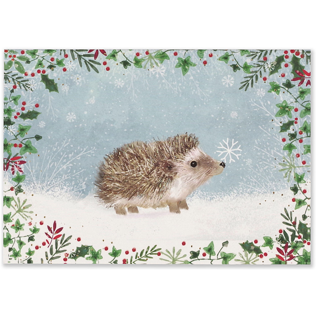 Happy Hedgehog Holiday Boxed Cards