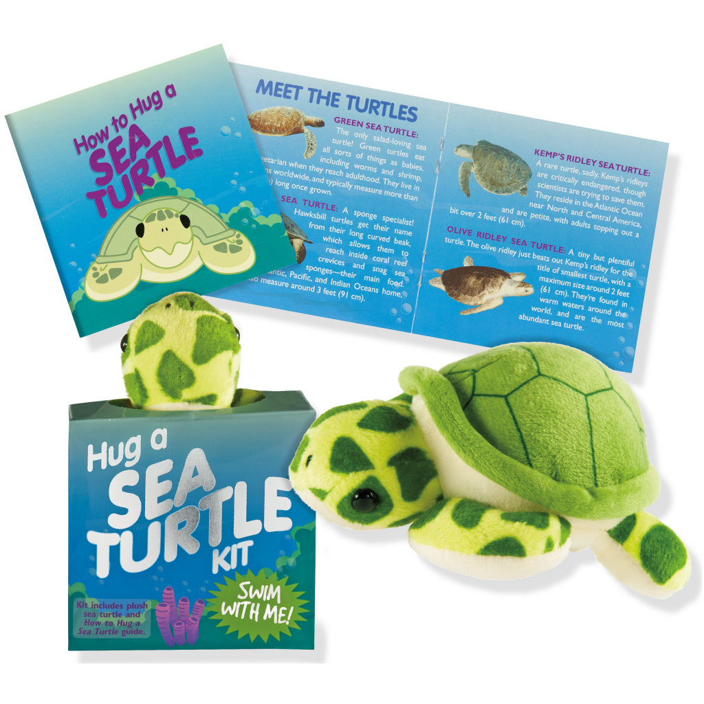 Contents of Hug a Sea Turtle Kit.
