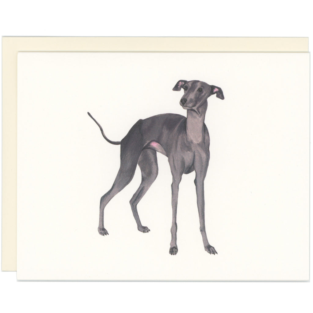 Italian Greyhound Dog Card