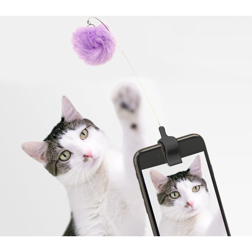 Kitty Phone Clip In Use