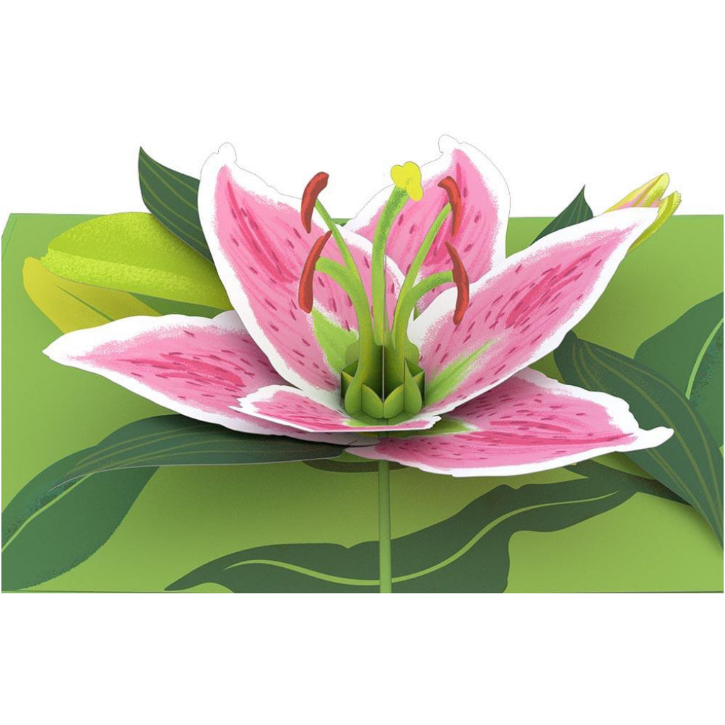 Lily Bloom 3D Pop Up Card