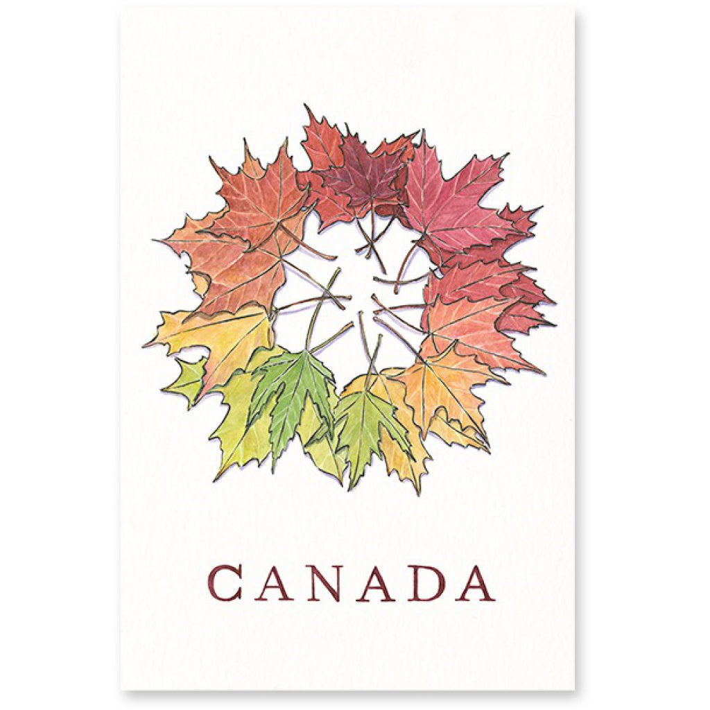 Maple Leaves Postcard