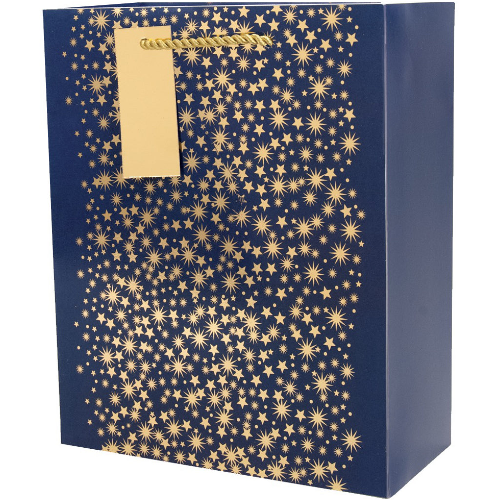 Midnight Sky Medium Gift Bag