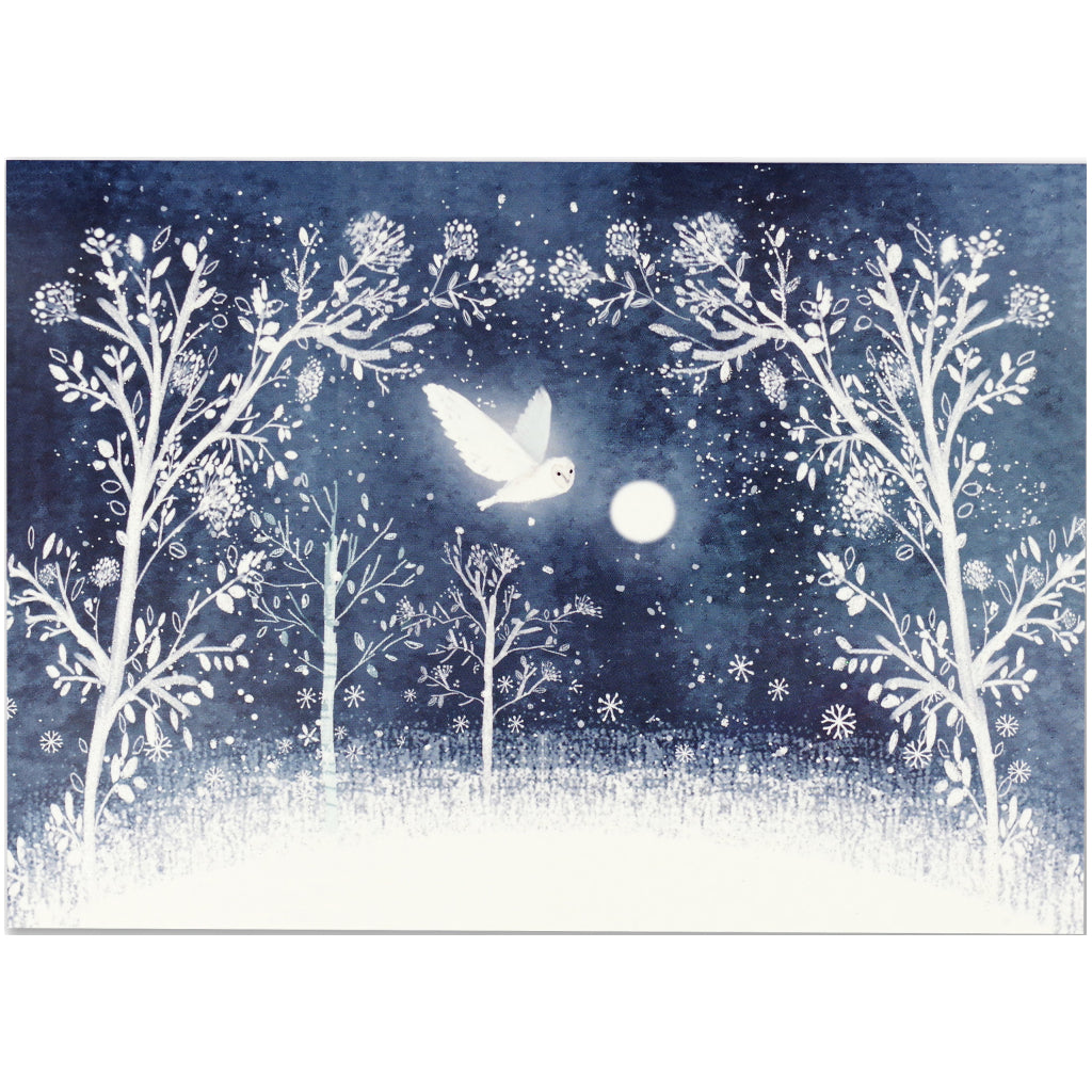 Moonlit Owl Deluxe Boxed Holiday Cards