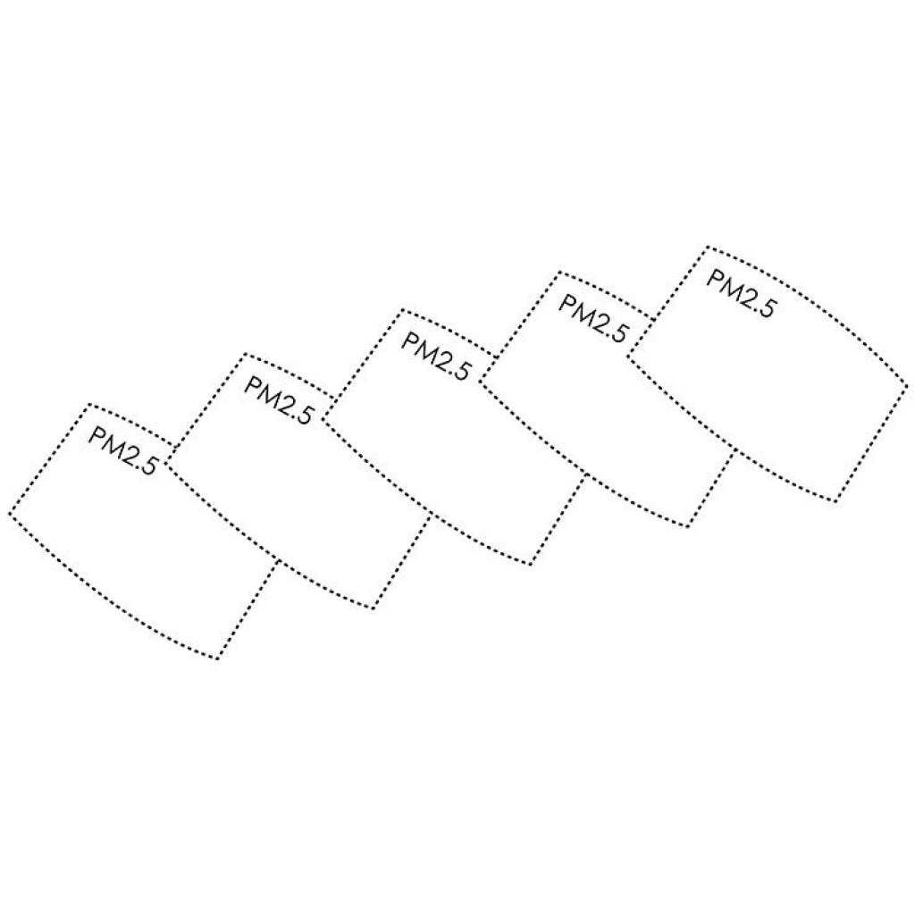 PM2.5 Replacement Filters Pack of 5
