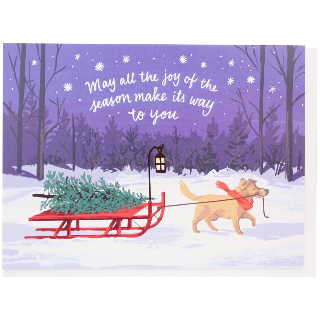 Sled Dog Joy Of The Season Card
