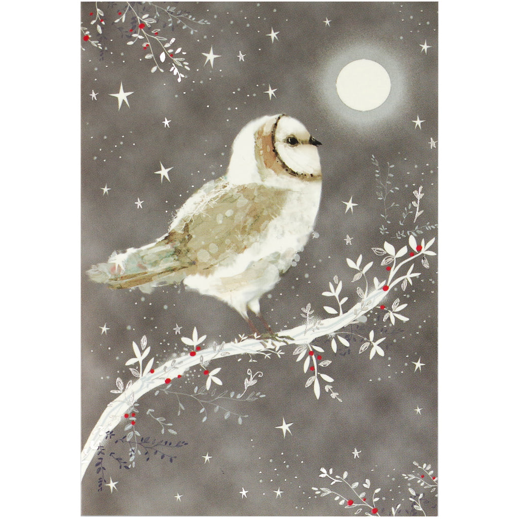 Starry Night Owl Boxed Holiday Cards