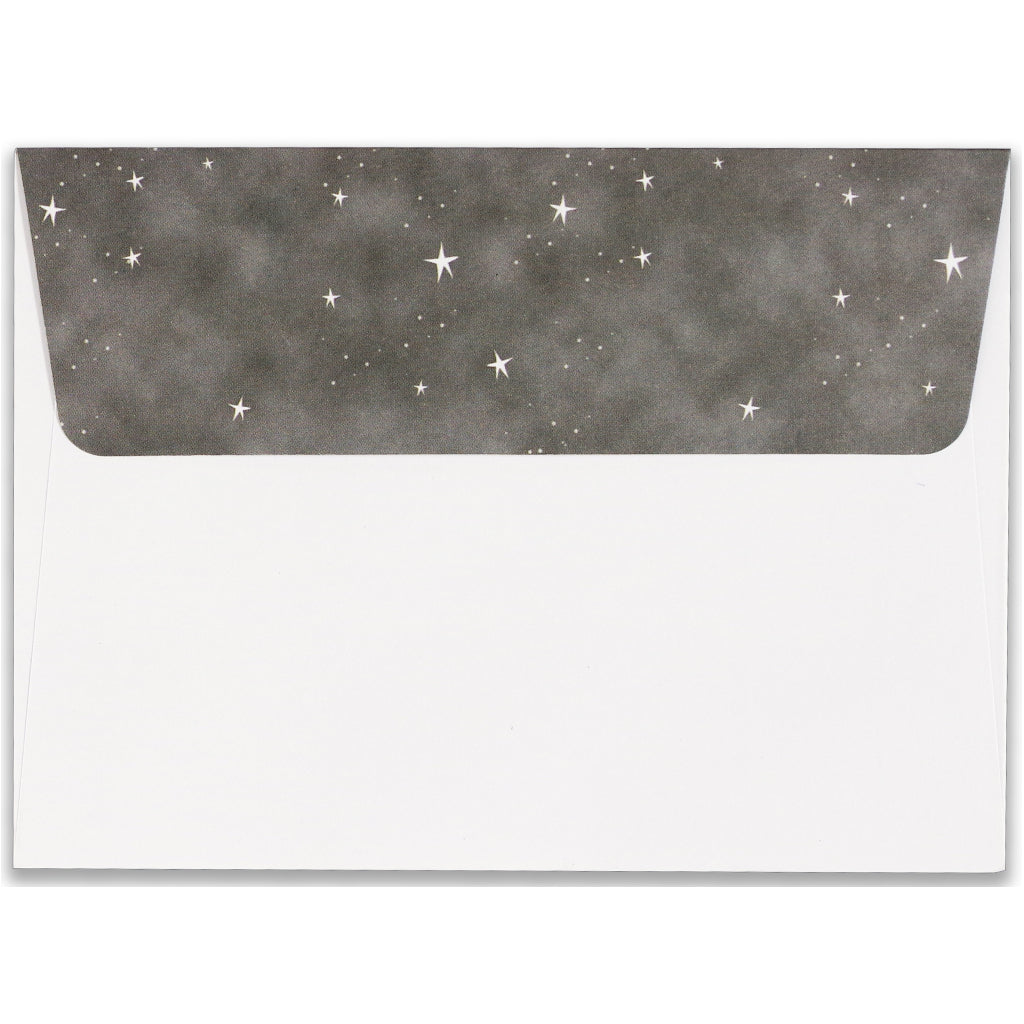 Envelope of Starry Night Owl Boxed Holiday Cards.