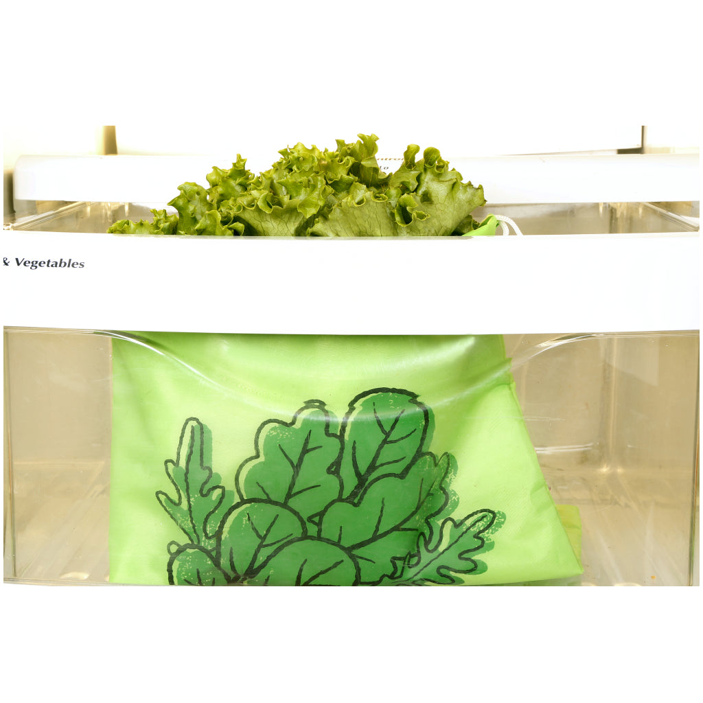 Lifestyle2 of Stay Fresh Lettuce Bag.