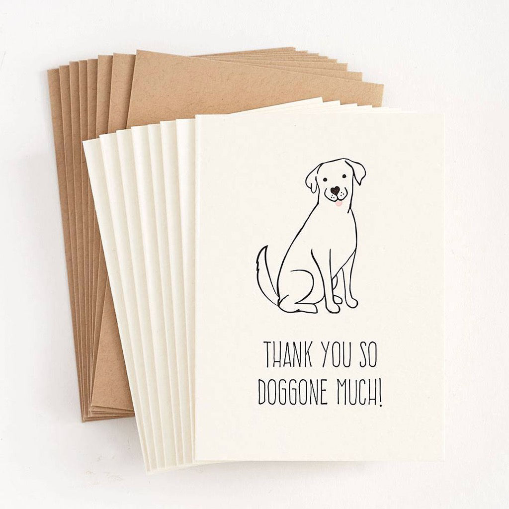 Thank You So Doggone Much Boxed Cards
