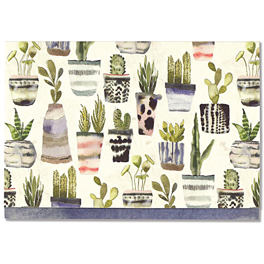 Watercolour Succulents Boxed Cards
