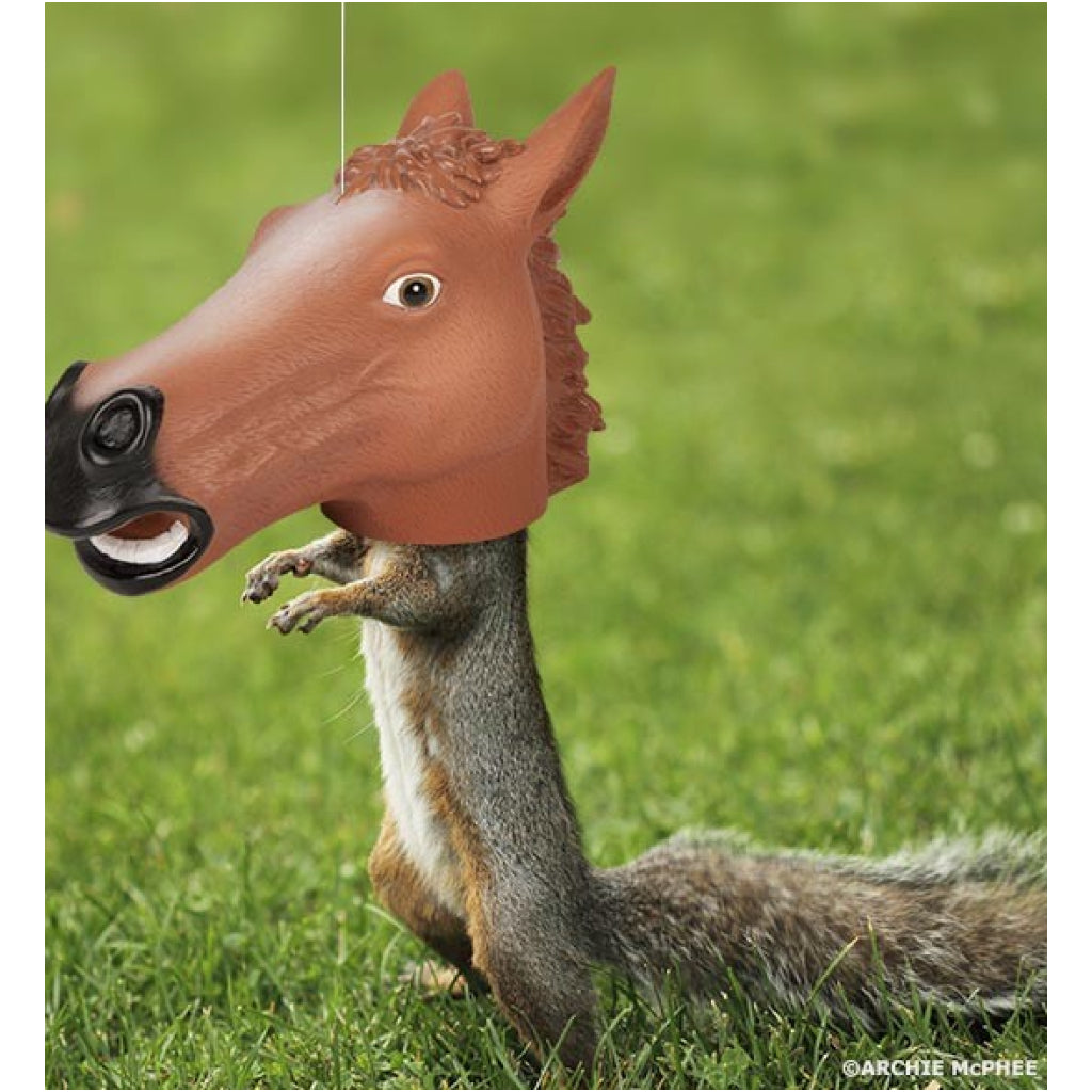 Horse Head Squirrel Feeder lifestyle