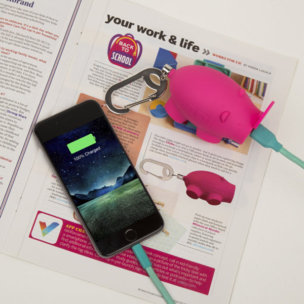 Working Mother magazine chubs pig power bank