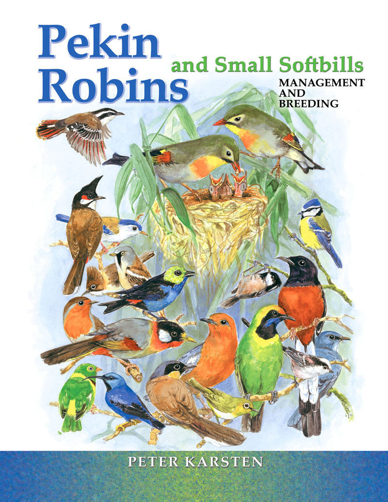 Pekin Robins and Small Softbills: management & breeding