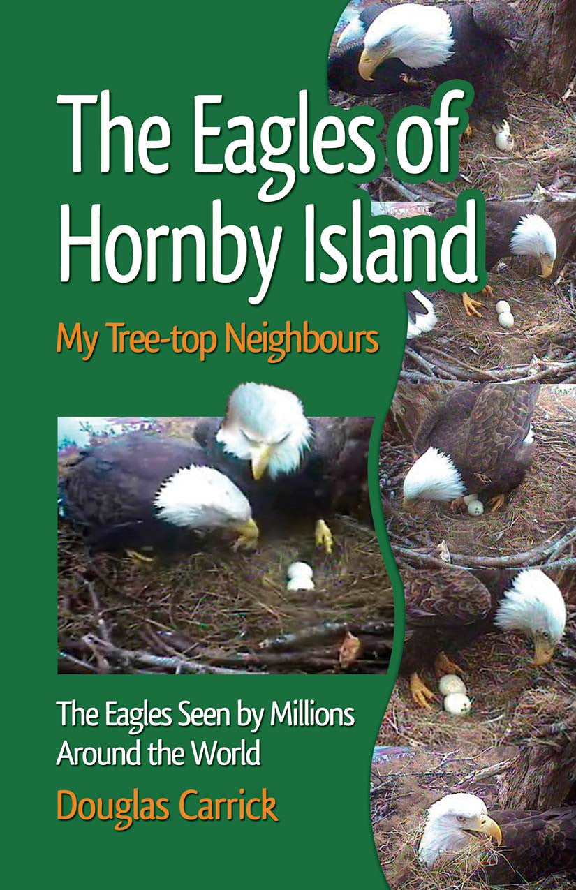 Eagles of Hornby Island: my tree top-neighbors