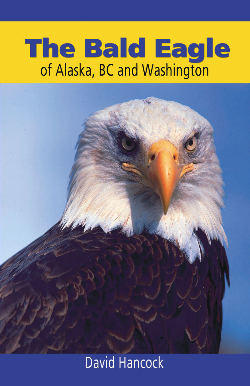 Bald Eagle of Alaska, BC and Washington