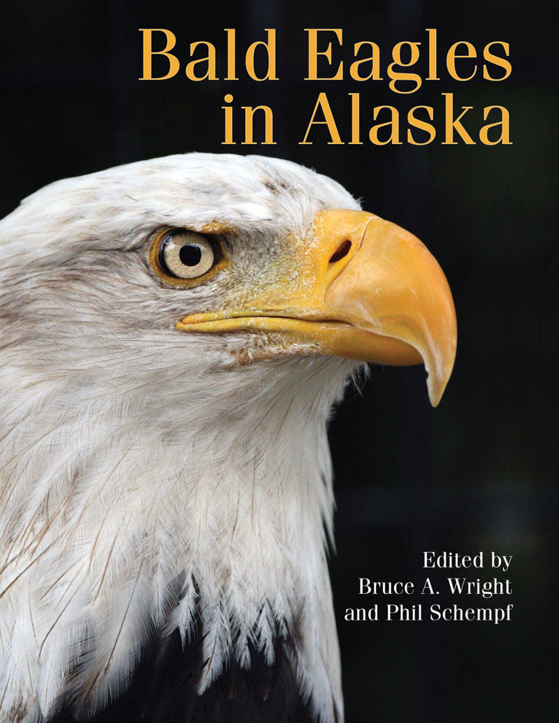 Bald Eagles in Alaska