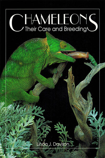 Chameleons: their care & breeding