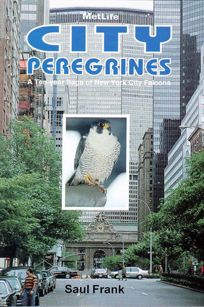 City Peregrines: a ten-year saga of New York falcons