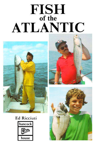 Fish of the Atlantic