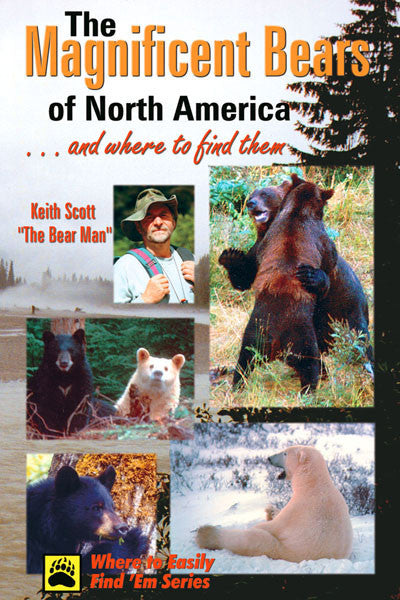Magnificent Bears of North America: and where to find them
