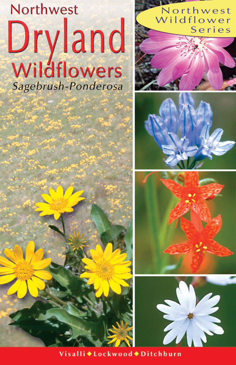 Northwest Dryland Wildflowers: of the sagebrush & ponderosa