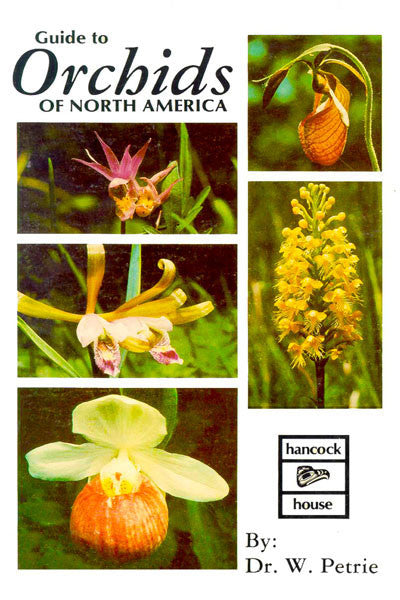 Orchids of North America